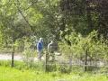 maiwanderung-2012-012-jpg